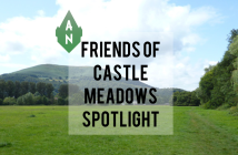 Friends of castle Meadows Spotlight