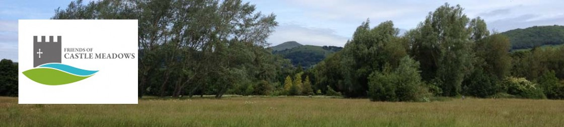 Friends of Castle Meadows Website Header Image