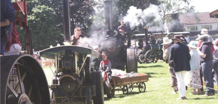 steam-rally-wp