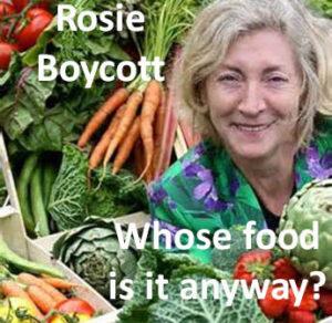 rosie-345x336