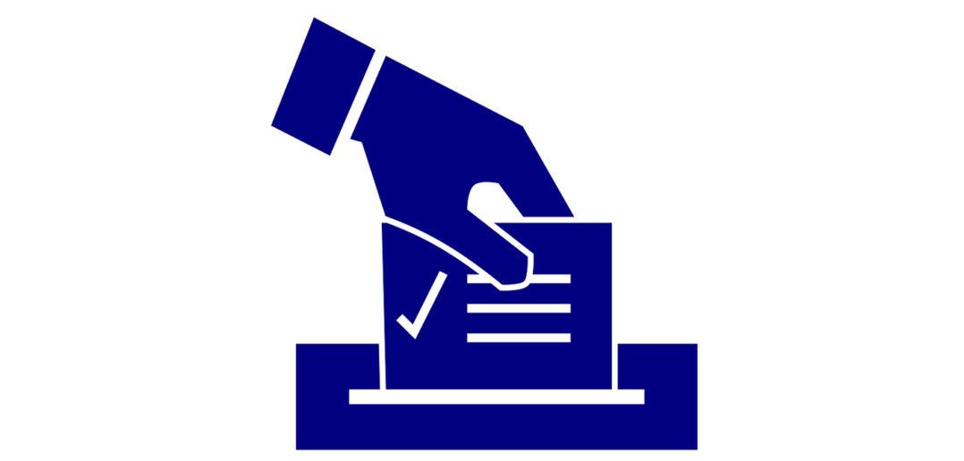 vote wp