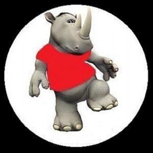 a rhinos