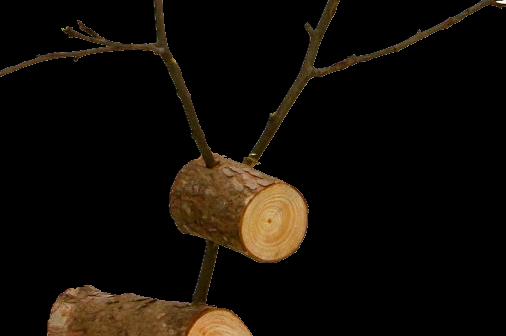 Log-reindeer1