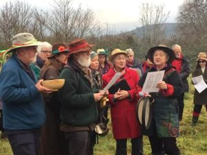 Wassail! @ Community Orchard | Wales | United Kingdom