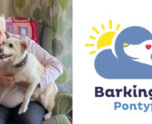 Overcoming Doglessness and Helping to Ease Social Isolation – Barking Mad Alternative to Dog Ownership Celebrates 20 Years