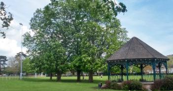 Bailey Park WP