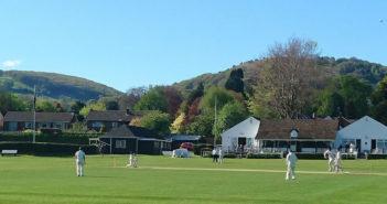 Cricket WP